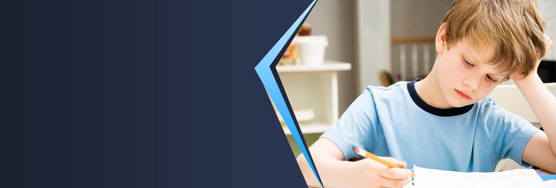 Özel Öğrenme GüçlüğüDestek Eğitim Programı